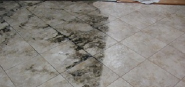 ile & Grout Cleaning